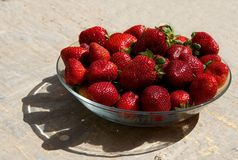 Red fresh strawberries on a plate on sunny summer day. Strawberries. Fresh red berry with the shadow. Seasonal fruits royalty free stock images