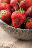 Red fresh strawberry in ceramic bowl Stock Images