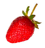 Red fresh strawberry isolated Stock Image