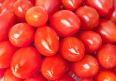 Red fresh tomato. With drop on it Royalty Free Stock Images