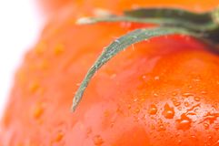 Red fresh tomato Stock Image