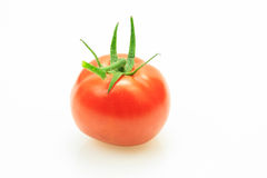 Red fresh tomato with stem Royalty Free Stock Photography