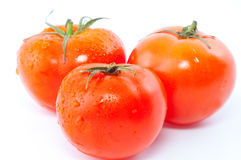 Red fresh tomatoes Stock Images