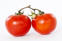 Red fresh tomatoes. On white background Stock Photos