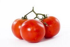 Red fresh tomatoes. On white background royalty free stock photography