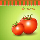 Red fresh tomatoes on abstract background. Vector illustration Stock Photography