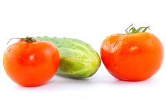 Red fresh tomatoes with cucumber Stock Photography