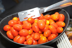 Red fresh tomatoes Royalty Free Stock Image