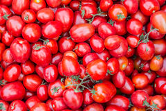 Red fresh tomatoes in local market. Pile of tomatoes for sale in local market Royalty Free Stock Photo
