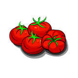 Red fresh tomatoes Royalty Free Stock Photos