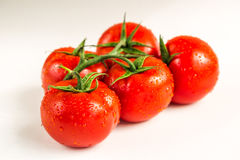 Red fresh tomatoes on white background. Red fresh tomatoes  on white background Stock Photography