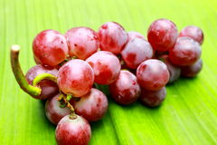 Grapes on bananas leaf. Red & freshing grapes on bananas leaf Royalty Free Stock Photo