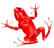Red frog royalty free illustration