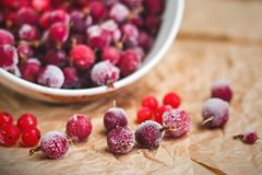 Red frozen berries of currant and gooseberry, covered with white frost, in a white plate and on the table royalty free stock photo