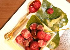 Red frozen berries on the leaves royalty free stock images