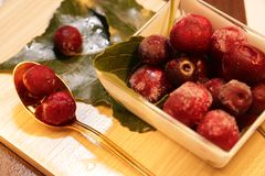 Red frozen berries on the leaves stock photography