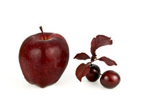 Red Fruit Royalty Free Stock Images