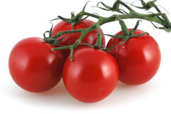 Red fruit. Red tomatoes in front of white background Stock Photos