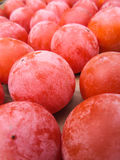 Red fruit Royalty Free Stock Photography