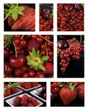 Red fruit collage Stock Images