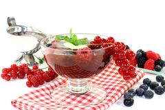 Red fruit jelly Stock Photos