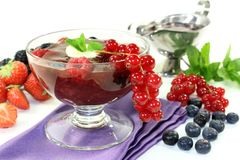 Red fruit jelly Stock Image