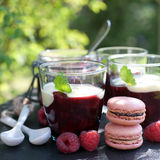 Red fruit jelly stock images