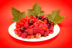Red fruit in white plate stock image
