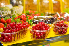 Red fruits Stock Image