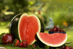 Red Fruits Stock Photography