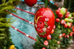 Red Fruits Decor Stock Images