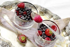 Red fruits dessert Royalty Free Stock Photo
