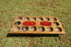 Red fruits of exotic trees on a wooden tray, Kerala, South India Stock Images