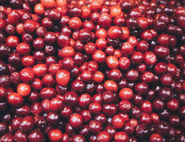 Red fruits Fresh Berry Top view Stock Image
