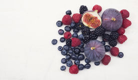 Red fruits hero header Stock Photography