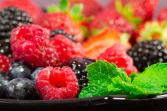 Red fruits selection Royalty Free Stock Photos