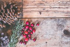 Red Fruits on Table Royalty Free Stock Photo