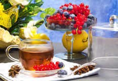 Red fruits tea Royalty Free Stock Photo