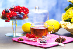 Red fruits tea Royalty Free Stock Image