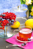 Red fruits tea with berries background Stock Image