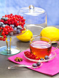 Red fruits tea over pink napkin Stock Image