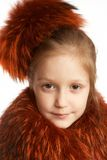 Red fur Royalty Free Stock Photography