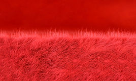 Red fur and fabric Royalty Free Stock Photography