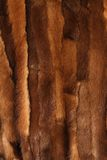Red fur texture Stock Image