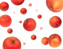 Red Gala apple floating. On a white background Royalty Free Stock Images