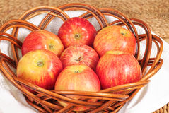 Red Gala apples in a wicker plate Royalty Free Stock Images