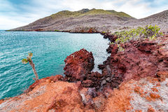 Red Galapagos Landscape Royalty Free Stock Photography