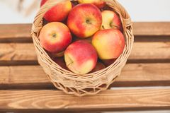 Red garden apples in a wicker picnic basket, on a wooden bench on a winter day, close-up. Blurred background royalty free stock images