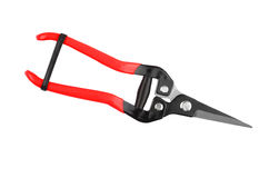 Red garden pruner. Isolated on a white background Stock Images
