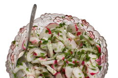 Red garden radish in salad. Stock Image